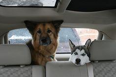 We always practice safe travel
