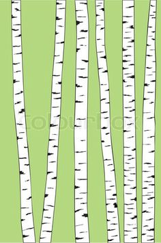 Vector of 'birch trunk trees background. Vector illustration' on Colourbox