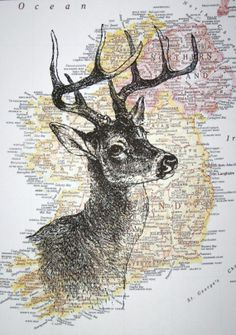 Irish Stag: deer head print on vintage-style map of Ireland, by CrowBiz, 15.