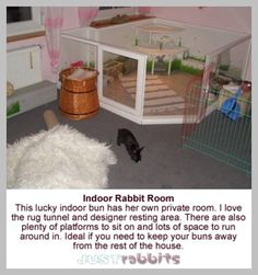 An indoor rabbit playpen ensures that owners can interact with their pet rabbits in the home. Great photos of indoor rabbit playpens Rabbit Run, House Rabbit, Pet Rabbit, Cage Hamster, Pet Cage, Bunny Cages, Rabbit Cages, Rabbit Playpen, Rabbit Enclosure