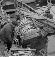 Lauterbach (Rügen). Hafen Arbeitende  Fischereiwesen.