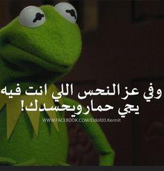 Arabic Jokes, Arabic Funny, Funny Arabic Quotes, Funny Relatable Quotes, Funny Texts, Kermit, Funny Picture Jokes, Funny Pictures, Funny Stuff
