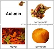 Autumn Season Cards for Toddlers - Printable Montessori Toddler Materials for Montessori Learning at home and school.