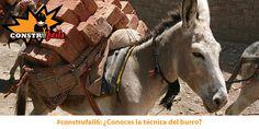 #construfail6: ¡Como descargar unos ladrillos en 2 segundos!