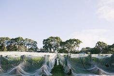 Amy and Dan Polperro Winery wedding in Red Hill on the Mornington Peninsula.