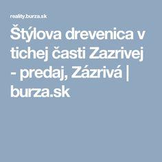 Štýlova drevenica v tichej časti Zazrivej - predaj, Zázrivá | burza.sk