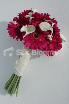 Stunning Pink Gerbera, Ivory Calla Lily and Ivory Rose Bouquet Stunning Pink Gerbera, Ivory Calla Lily and Ivory Rose Bouquet [Kaitlyn- Bride] - £89.99 : Artificial Wedding Flowers | Bridal Bouquets | Silk Wedding Flowers | Wedding Bouquets | Wedding Flowers, Silk Blooms Glasgow, we sell and hire artificial wedding flowers, bridal bouquets, buttonholes and wedding table arrangements.
