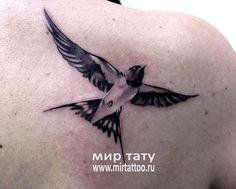 татуировка ласточка - Поиск в Google