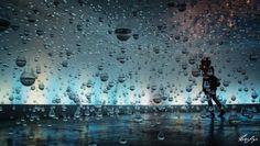 In the Still Rain  by Pedro Souza on 500px