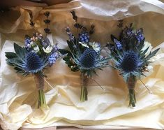 Your very first decision ought to be whether you plan to utilize a professional floral designer to produce a wedding event flower arrangement and bouquets. Thistle Boutonniere, Thistle Bouquet, Boutonnieres, Purple Wedding Bouquets, Floral Wedding, Wedding Flowers, Scottish Wedding Traditions, Scottish Wedding Dresses, Scottish Weddings
