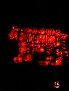 Tiger made entirely out of Jack o lanterns