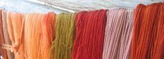 värjärikilta natural dyes