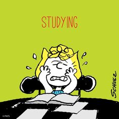 Homework: Enough Already! Charlie Brown Quotes, Charlie Brown And Snoopy, Snoopy Comics, Fun Comics, Peanuts Cartoon, Peanuts Snoopy, Snoopy School, Sally Brown, Snoopy Quotes