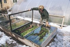 Secret To Winter Gardening For next winter - cold frame gardening- fresh greens in winter!For next winter - cold frame gardening- fresh greens in winter! Cold Frame Gardening, Organic Gardening, Gardening Tips, Hydroponic Gardening, Aquaponics Diy, Container Gardening, Garden Boxes, Garden Table, Garden Structures