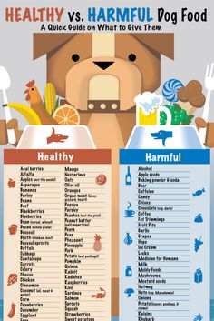 Providing a healthy diet for your dog isn't always so easy. Download and Print our Guide.