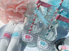 Pink & Blue Elephant/Gray Chevron Theme - Gender Reveal Party
