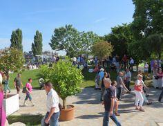 ZDF Fernsehgarten 14.06.2015