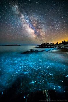 Bioluminescence 2 by Benjamin Williamson – Photography, Landscape photography, Photography tips Landscape Photography Tips, Nature Photography, Travel Photography, Photography Women, Photography Ideas, Photography Aesthetic, Maternity Photography, Portrait Photography, Wedding Photography
