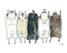 Pug Art Print Roll Call Fawn Brindle and Black Pugs in by InkPug, $10.0 #pug Art Print Roll Call Fawn Brindle and Black Pugs in by InkPug, $10.00