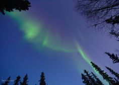 I love when the aurora is bright it shows through twilight and we get this cobalt + blue-green colors.