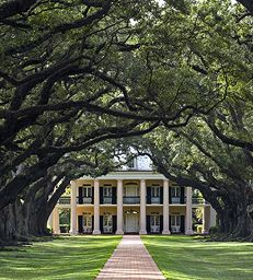 Would you believe I live in the South and have never been to a place like this?  I guess Andrew Jackson's plantation counts, though, right?