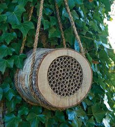 "Birch Bee Log - ""Made of natural birch timber, natural cane tubes and seagrass, this Birch Bee Log provides a cozy home for solitary bees."