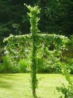 Midsommar #Sweden volgend jaar in mijn tuin met mooi weer...