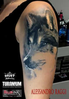 Realistic wolf  tattoo Black and gray   Artist:Alessandro Raggi  Ink Addicted Savona Italy