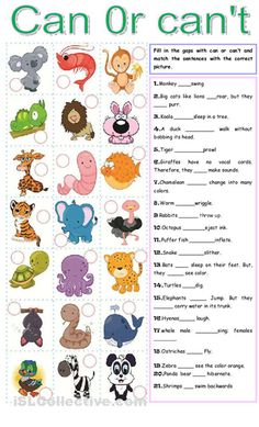 Complete and match sentences to pictures. Grammar: Present perfect simple tense; Animal Worksheets, Vocabulary Worksheets, School Worksheets, Printable Worksheets, English Lessons, Learn English, English Book, English Class, Modal Can
