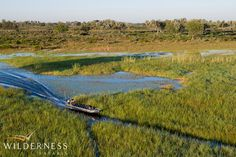 Jao Camp - Exploring the myriad of waterways in the Okavango (mostly created by large herbivores) by boat is an incredible experience! #Safari #Africa #Botswana #WildernessSafaris