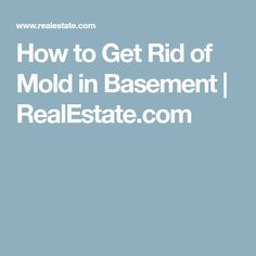 How to Get Rid of Mold in Basement | RealEstate.com #getridofmold