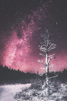 #Winter #Sky #Snow #Nature Stock photography, Night, Cloud, Wallpaper - Follow @extremegentleman for more pics like this!