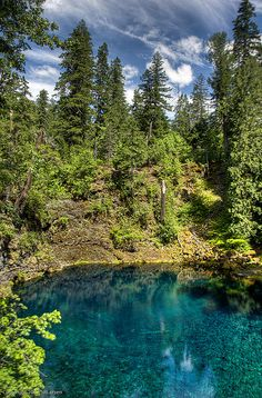 Opal Pool At Opal Creek Wilderness Great Hike Today Everything Pinterest Wilderness