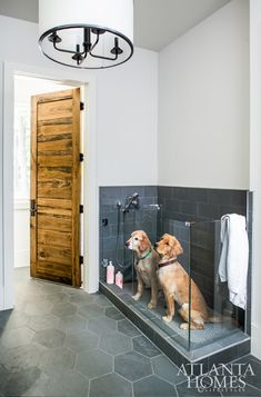 The Sheehans' two golden retrievers, Burton and Roscoe, enjoy the outdoors as much as their children, swimming in the pool on a daily basis. To accommodate the two occasionally soaking-wet dogs, Sheehan incorporated a dog wash in the mudroom right off the Dog Washing Station, Dog Feeding Station, Pet Station, Snack Station, Sweet Home, Dog Rooms, Rooms For Dogs, Dog Shower, Slate Shower