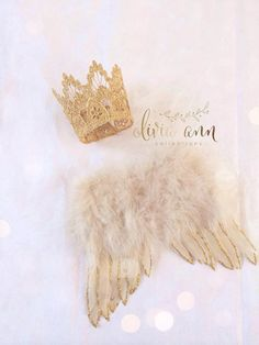 Baby Angel wings & Crown set. Nude wings with gold tips Great newborn photography prop