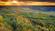 Dry Island Buffalo Jump Provincial Park Alberta   Buffalo Jump.   Good afternoon everybody, what do you think about when you see beautiful fields that simply lets the imagination run in different directions ?