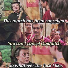 Ha! Harry Potter