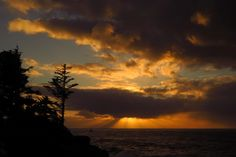 """AccuFan #Weather Photo of the Day: Sunset In Charleston, Oregon by """"BigSandyKnoll"""" on 11/29/14 #photooftheday"""
