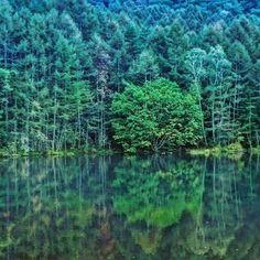 【kazuhiro480812】さんのInstagramをピンしています。 《やっぱり御射鹿池を載せたくなる🎄 #過去pic#緑好き#森林#スマホ写真#スマホ写真部#すまほ写真部#すまほ写真ら部#スマホ写真撮ってる人と繋がりたい#スマホで撮る私の世界#写真好き#写真好きな人と繋がりたい#写真撮ってる人と繋がりたい#写真で伝えたい私の世界#長野県#御射鹿池#自然が好き#japan#nagano#ig_japan#ig_capture#ig_world#ig_pic#ig_photo#insta_picture#insta_world#ig_nature》