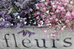 :) Fleurs