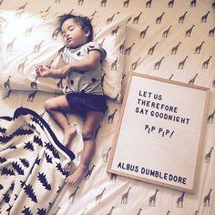 Sweet dreams, little babes | Letterfolk : @anoliveleaf