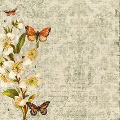 Botanical paper with butterflys