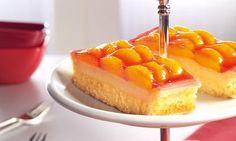 rezept-Mandarinen-Käsekuchen vom Blech