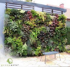 Zewnętrzna zielona ściana w prywatnym ogrodzie - październik 2011 - Greenarte®