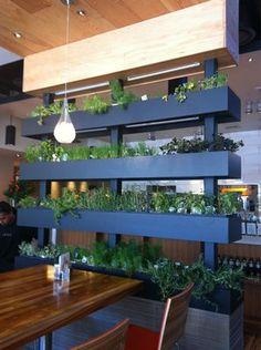 indoor planting wall