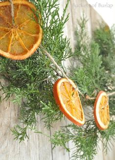 Love dried oranges for Fall and winter, they turn out great! Need to make this garland using natural Juniper branches. - Orange Garland-easy to make and adds wonderful scent to your room! from Vintage Country Farmhouse Noel Christmas, Primitive Christmas, Country Christmas, Simple Christmas, Winter Christmas, All Things Christmas, Vintage Christmas, Xmas, Christmas Hanukkah
