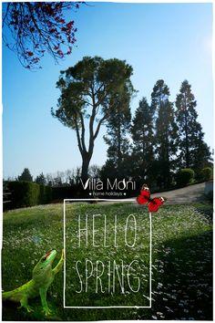 Ben arrivata primavera - Hello spring - Villa Moni 2017 - Butterfly and lizard