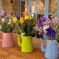 20+ideas+para+tu+jardín