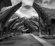 Traditional houses -- Tana Toraja, Sulawesi, Indonesia