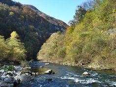 Reka Idrijca - voda kjer postrv prinese rajsko muharjenje